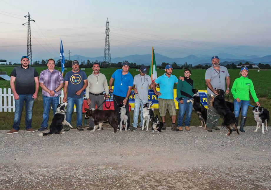 Team Italian Sheepdog Association - Associazione Italiana Sheepdog